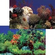 PENN PLAX Akvárium háttér kétoldalas 50cm/15m Amazon Waters /Coral