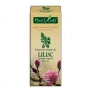 Extract din muguri de Liliac