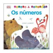 Brinca E DescobreOs Números