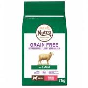 Nutro Grain Free Adult Mini Miel 7 kg