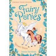 Fairy Ponies. Unicorn Prince, Hardback/Zanna Davidson