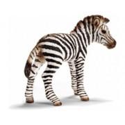 Figurina animal Pui de zebra - Schleich 14393