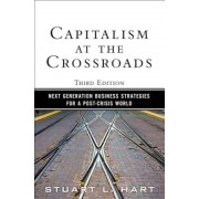 Capitalism at the Crossroads: Next Generation Business Strategies for a Post-Crisis World, Paperback