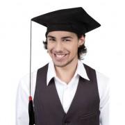 Geen Afstudeer hoedjes geslaagd per stuk
