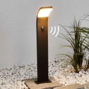 Lampenwelt.com Timm - borne lumineuse LED avec capteur, 60 cm - LAMPENWELT.com