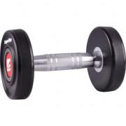 dumbbell Profi 2 kg (9165)
