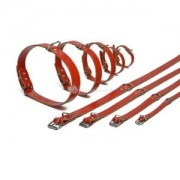 Lederen honden halsband rood - 27 cm x 10 mm
