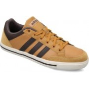 ADIDAS NEO CACITY Sneakers For Men(Tan)