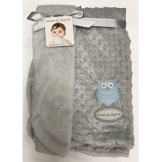 Blankets & Beyond Cuddly Grey Plush Fleece Blanket with a Baby Blue Owl Applique by Blankets and Beyond