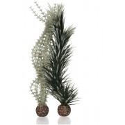 biOrb velká rostlina Ambulie šedo - zelená