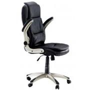 Scaune ergonomice 256