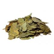 Profikoření - Ginkgo biloba listy (5kg)