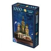 DToys Puzzle 1000 Night Landscape 10 (07/64301-10)