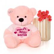 4 feet big pink teddy bear wearing Worlds Best Sister T-shirt