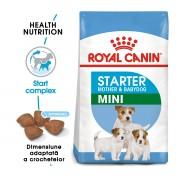 Royal Canin Mini Starter Mother & Babydog 8.5 kg