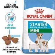 Royal Canin Mini Starter Mother & Babydog pour chiot 2 x 3 kg