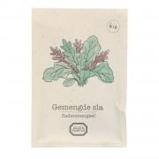 Dille&Kamille Mélange de graines biologiques, salade