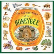 The Life and Times of the Honeybee, Paperback