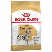 Royal Canin Dalmata Adulto 12kg