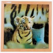 Tygrysiątko – puzzle 49 elementy