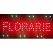 Reclama LED - Florarie -