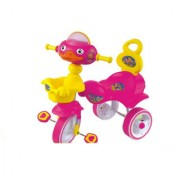 Oh Baby Baby Bird Mask PINK Musical Tricycle For Your Kids SE-TC-122