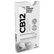 Meda pharma spa Cb12 Boost Eucal White 10chew