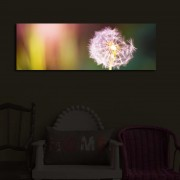Tablou pe panza iluminat Shining, 239SHN3222, 30 x 90 cm, panza