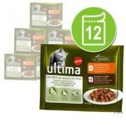 12 x 85 g Gemengd Probeerpakket: Ultima - Gemengd Probeerpakket (12 x 85 g)