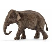 Schleich Elefant Asian