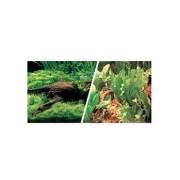 HAGEN Fundal cu două fețe pentru acvariu peisaj japonez / plante și pietre 30cm x7.5m