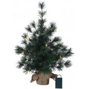 Star Trading Bordstall 60cm hög grön med ljusslinga 20 ljus