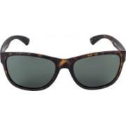 INVU Retro Square Sunglasses(Grey)