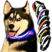 LED halsband till hunden - L, Blå
