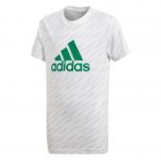Laste vabaajasärk adidas YB Logo Tee Jr CF6512