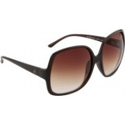 United Colors of Benetton Wayfarer Sunglasses(Brown)