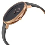 Ceas de damă Skagen Ditte SKW2216