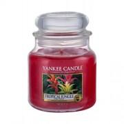 Yankee Candle Tropical Jungle ароматизирана свещ 411 гр unisex