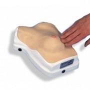 simulatore seno per esercitazioni cliniche