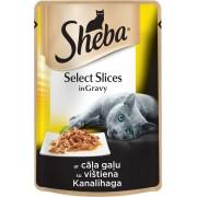 Котешка храна Sheba Cuisine Pouch пилешко, 6 броя х 85 г