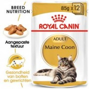 Royal Canin Maine Coon Adult Pouch 12 x 85 gram
