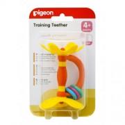 Pigeon Training Teether Step 1