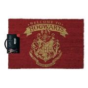 Harry Potter - Welcome To Hogwarts Door Mat