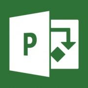 Microsoft Project Pro 2016 Win German Medialess