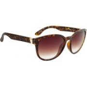 Esprit Round Sunglasses(Brown)