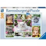 Пъзел Ravensburger 500 елемента, Колаж котета, 701067