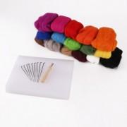 160 G 16 Colors Pure Wool Felt Craft Tops Felting Set Needle Kit Starter Felted Mat