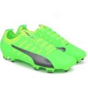 Puma evoPOWER Vigor 2 FG Football Shoes For Men(Green)