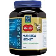 Manuka honing MGO 250+ - 1 KG Manuka Health