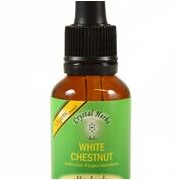 White Chestnut (Castan salbatic)